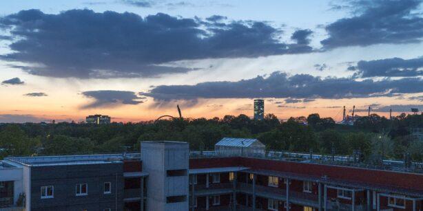 Traum-Dachgarten über München: Ein Besuch bei Wagnis 4