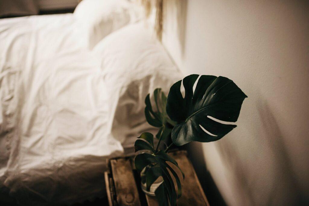 Gesunder Schlaf: Tipps, um besser einzuschlafen