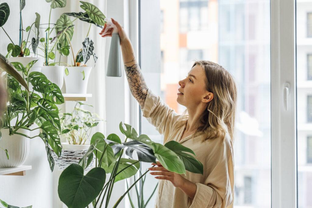 Gesunder Schlaf Zimmerpflanzen Frau sprüht verschiedene Zimmerpflanzen mit Wasser