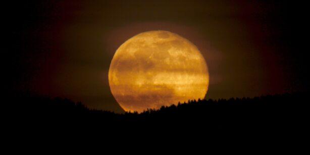 Der Mond im Juni: Die wahre Bedeutung des Erdbeermonds