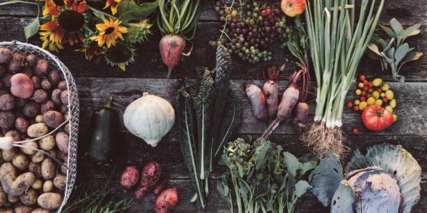 """Buchtipp: """"Erde, Salz & Glut. Gemüseküche im Rhythmus der Jahreszeiten"""""""