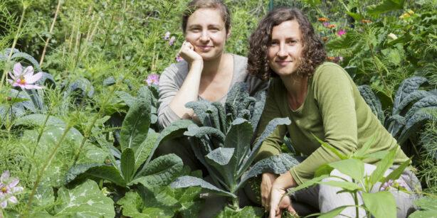 Urban Farming – das erste Buch der Frankfurter Gemüseheldinnen