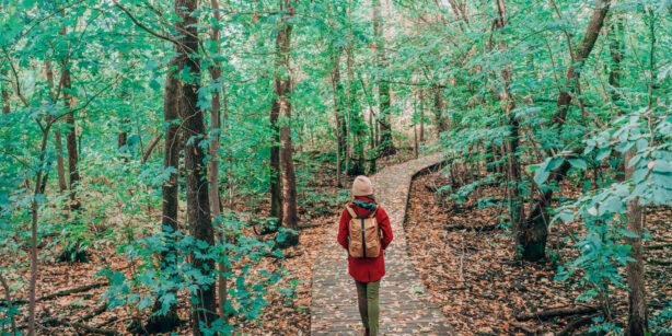 Wanderlust: 5 Tipps, um den Wohnort (neu) zu entdecken